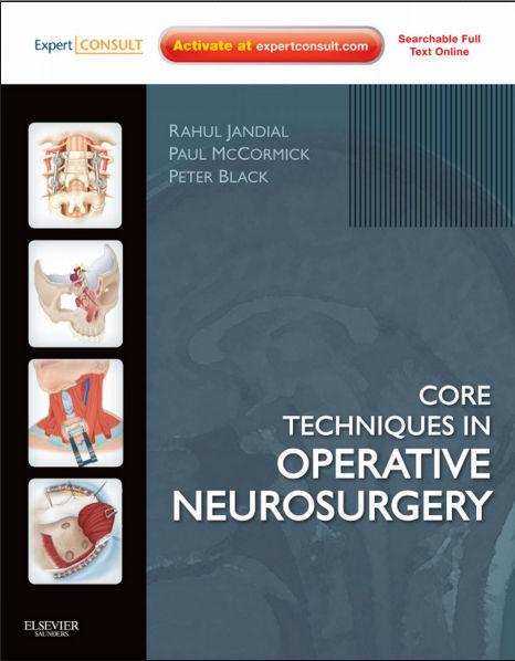Core Techniques in Operative Neurosurgery [PDF]