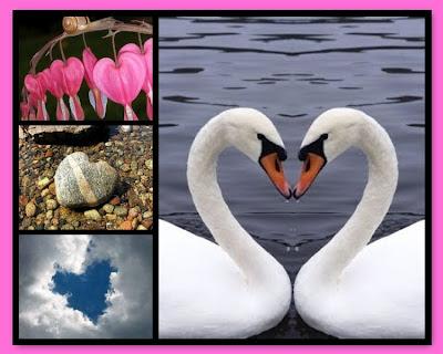 Happy Valentines Day, swan, cloud, rock, flower