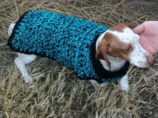 ... com/pattern/crocheting/pet/crochet-quick-and-chunky-dog-sweater/86026