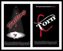 Meekehleh's Novels - Falling & Torn
