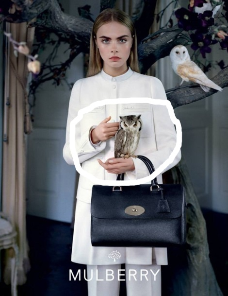 Cara Delevigne in Mulberry Campaign with Owl