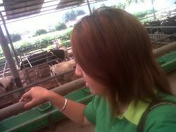 Kunjungan ke PKS Farm 10 Agustus 2012