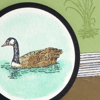 Video Tutorial for Watercoloring with Stampin' Up! Moon Lake #occasions #watercolor #stampinup www.juliedavison.com