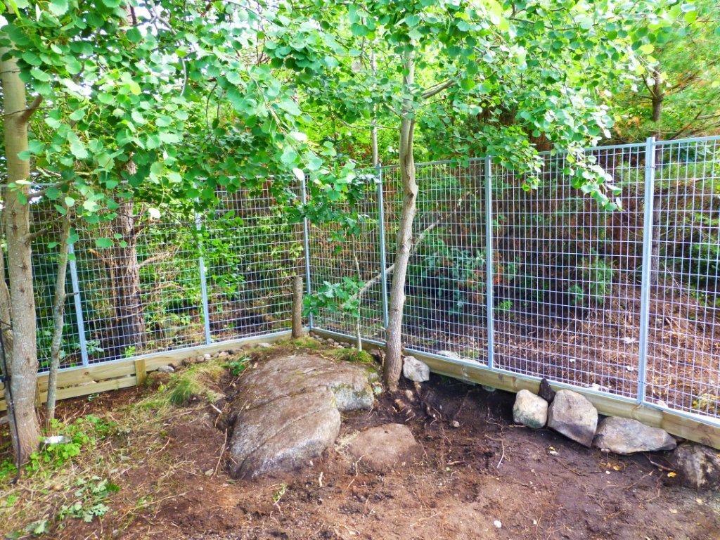 bygga hundgård