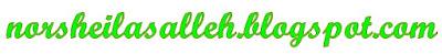 norsheilasalleh.blogspot.com