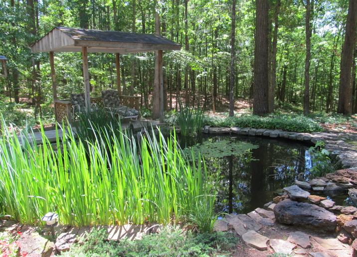 Prunepicker beautiful koi pond and a snake for Beautiful koi ponds