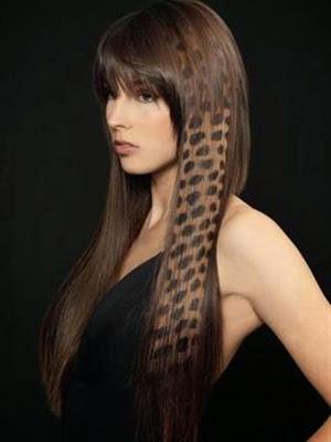stencil peinados 2014 cabello