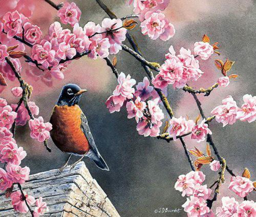 اجمل لوحات الالوان المائية والالوان الزيتية