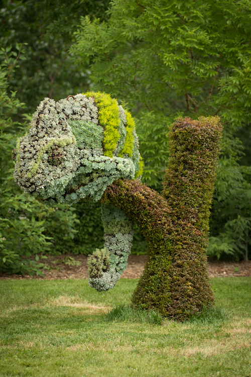 Plant Sculptures At Montreal Botanical Garden