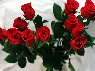 day red roses wallpapers and desktop high quality wallpapers red ...