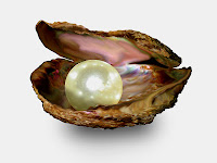 http://3.bp.blogspot.com/-gX8F34EpB3M/UExUCVW9DcI/AAAAAAAAAcM/Ro87VVRmxdk/s1600/pearl-of-great-price-vibrance1.jpg