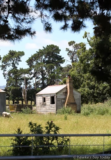 Living history, cottage on SH50, Tikokino photograph