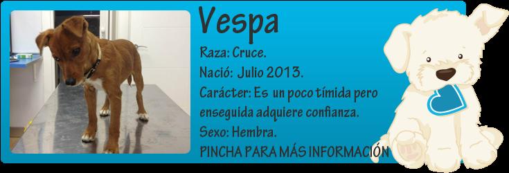 http://mirada-animal-toledo.blogspot.com.es/2013/10/vespa-avandonada-en-una-finca.html