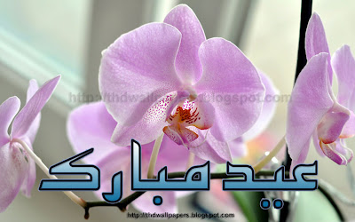 Free Eid Ul Zuha Adha Mubarak 2012 Card Flower Wallpapers Urdu Text 001
