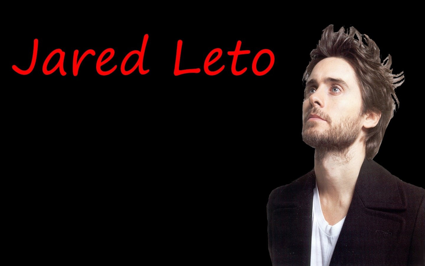 http://3.bp.blogspot.com/-gXu70Ire8uk/ToBaFsF17BI/AAAAAAAAD7s/u-AQU2P0UFw/s1600/Jared-Leto-Wallpaper-30-seconds-to-mars-1440x900.jpg