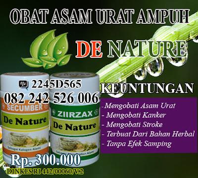 obat asam urat dan kolesterol tradisional mujarab