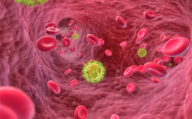 Scientists hope to be able develop a vaccine to prevent HIV after capturing the most detailed picture yet of a key Aids protein