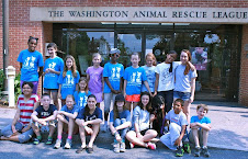 All About Animals Camp -- Dogs, Cats, Snakes, Turtles, Rabbits, Sheep, Pigs & More