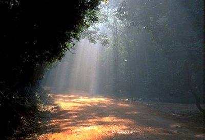 Päike teele