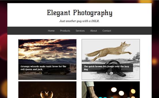 Elegant Photography Template - Mẫu Blogspot cho trang hình ảnh
