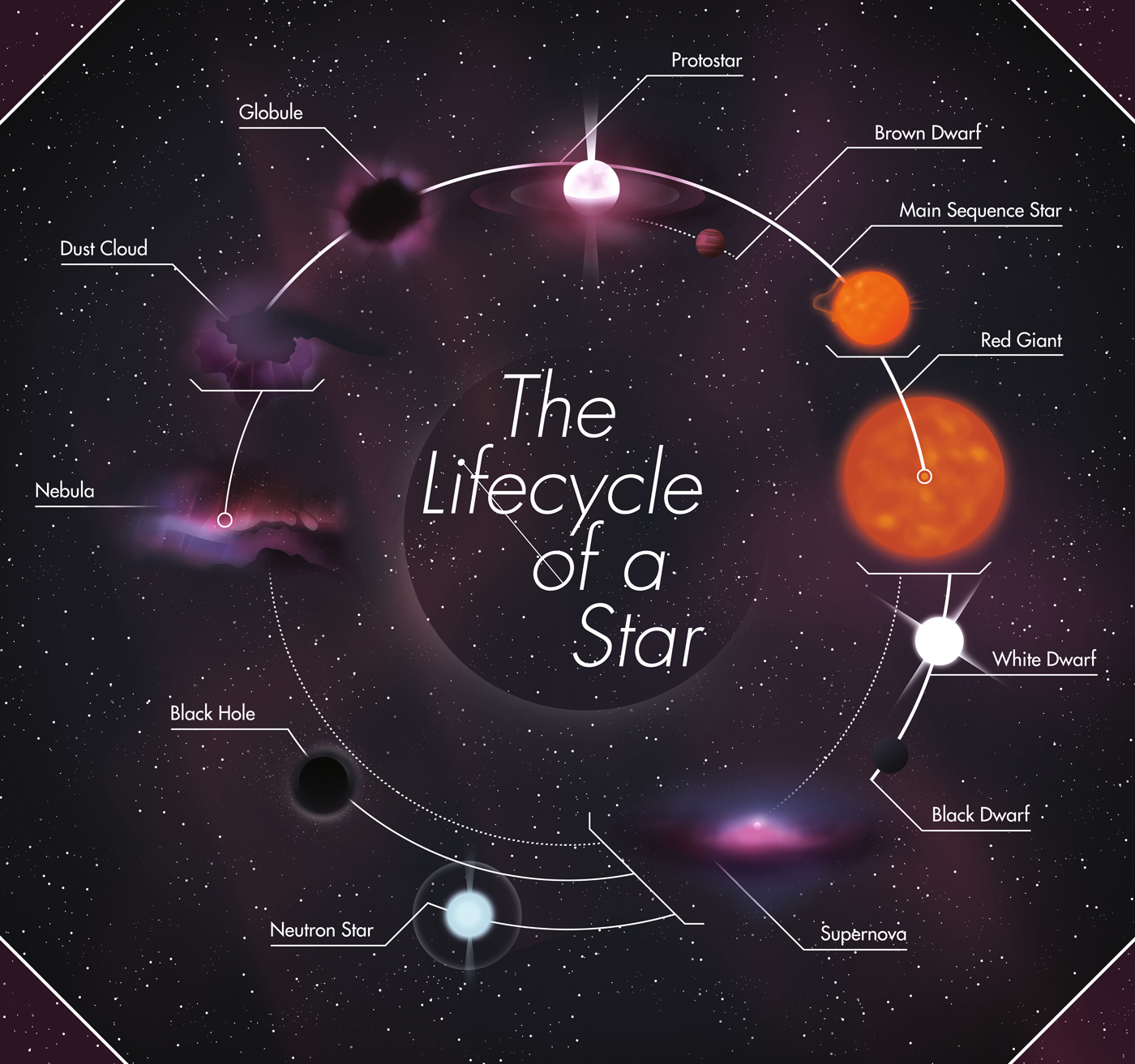 Free Worksheet Life Cycle Of A Star Worksheet black and white dwarf stars life cycle pics about space the yowm creation days e