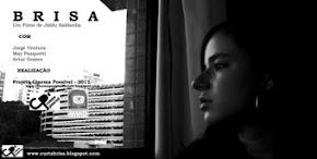 BRISA - 2011