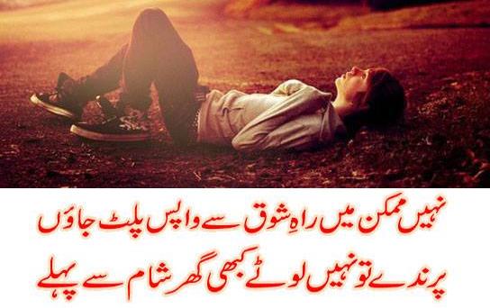 Shero Shayari in Urdu Love Sad