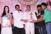 Galipatam platinum disk function-thumbnail-11