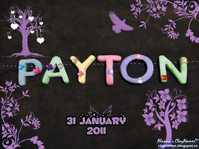 Payton January 31 2011