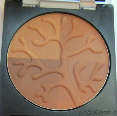 Revlon Bronzed & Chic Photoready Bronzer