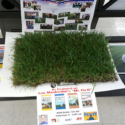 Sample of Jonathan Green Black Beauty Sod