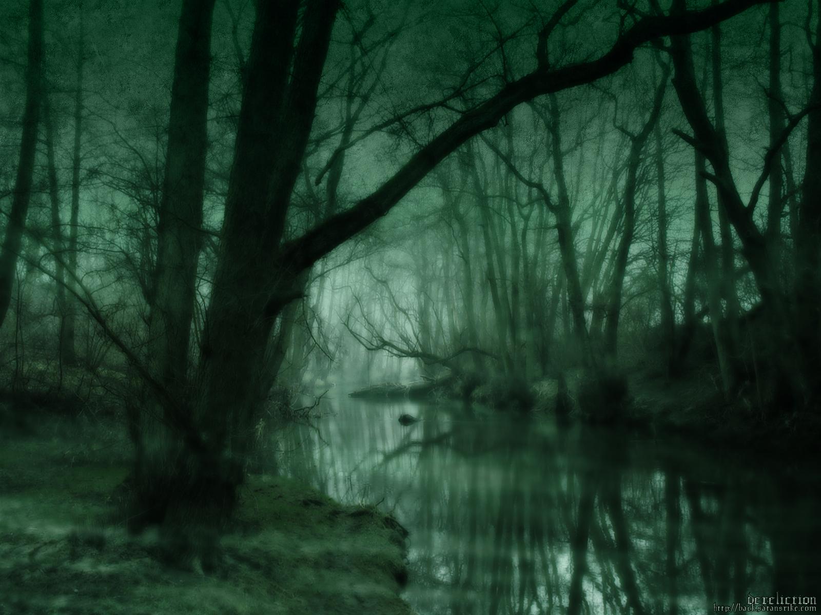 http://3.bp.blogspot.com/-g_O2Re604vo/T9xwwQ7pHtI/AAAAAAAAAxE/J82VLk2Zcs4/s1600/Dark-Forest-Wallpaper-6.jpg