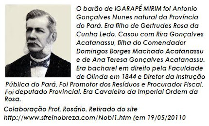 Quem foi Barão de Igarapé Miri?