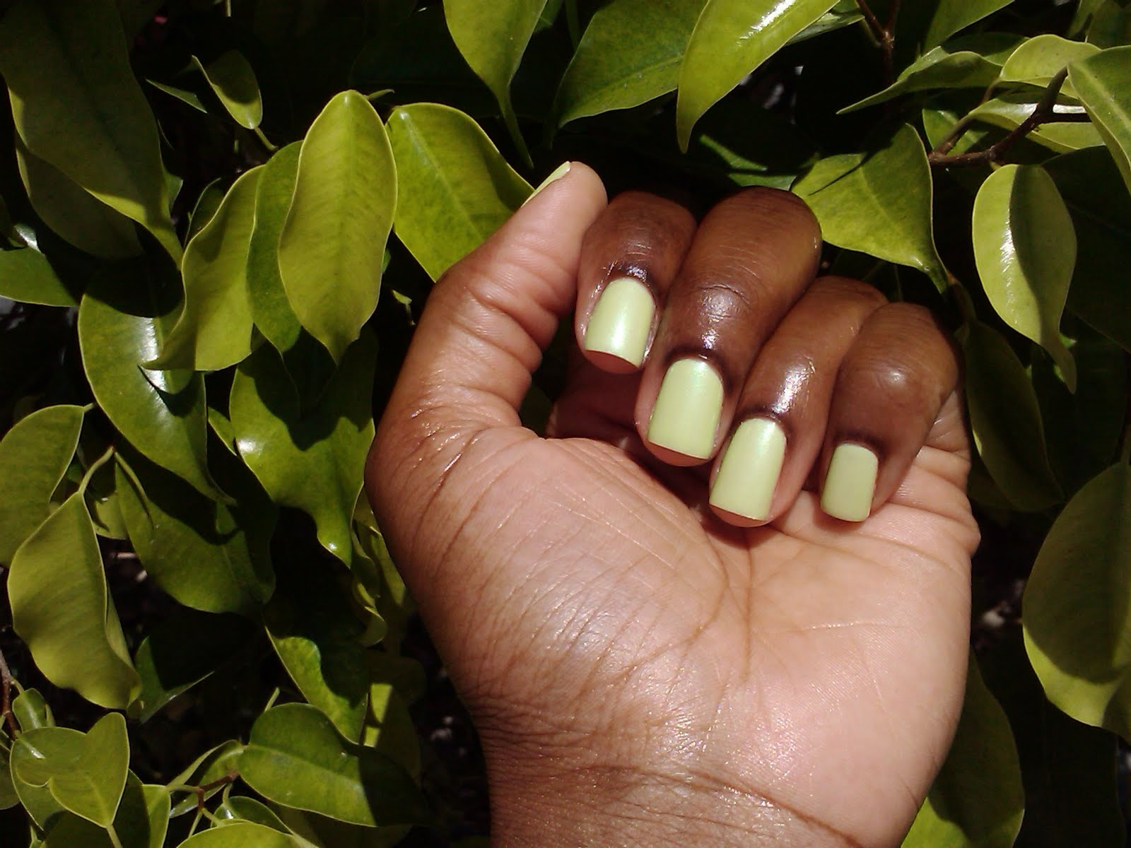 Sally Hansen Chartreuse Chase- Mani of the week
