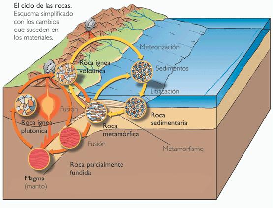 Rocas ígneas, sedimentarias y metamórficas | Ciencias de la Tierra