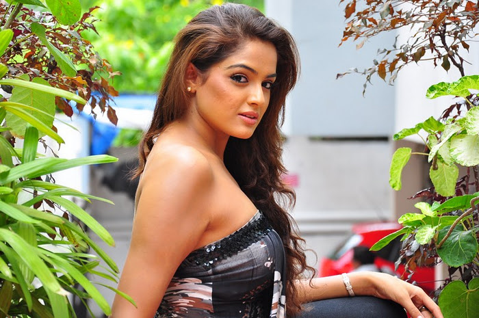 Actress Asmita Sood Beautiful Cleavage Photos wallpapers