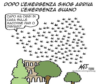 Roma, smog, pm10, polveri sottili, guano, storni, targhe alterne, vignetta, umorismo, satira