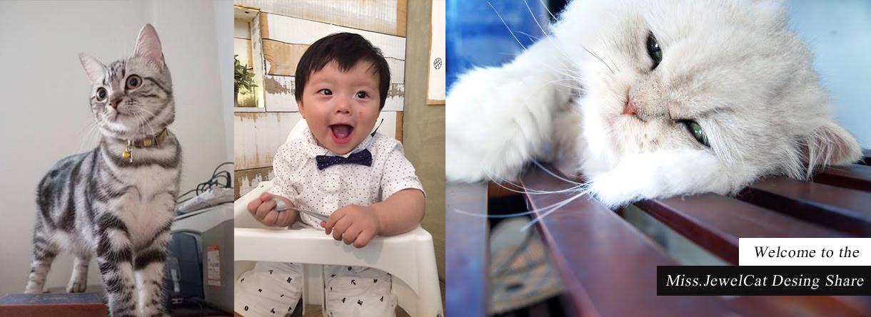 寶石貓 | 少女的不專業養貓育兒日記