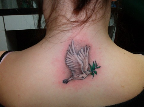 Dove Tattoo Designs Meaning