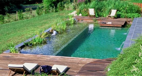 A qu se denominan piscinas ecol gicas casas ideas for Piscinas ecologicas pequenas