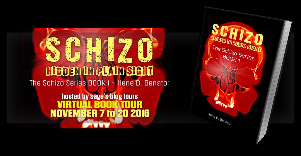 Schizo Hidden In Plain Sight Virtual Tour