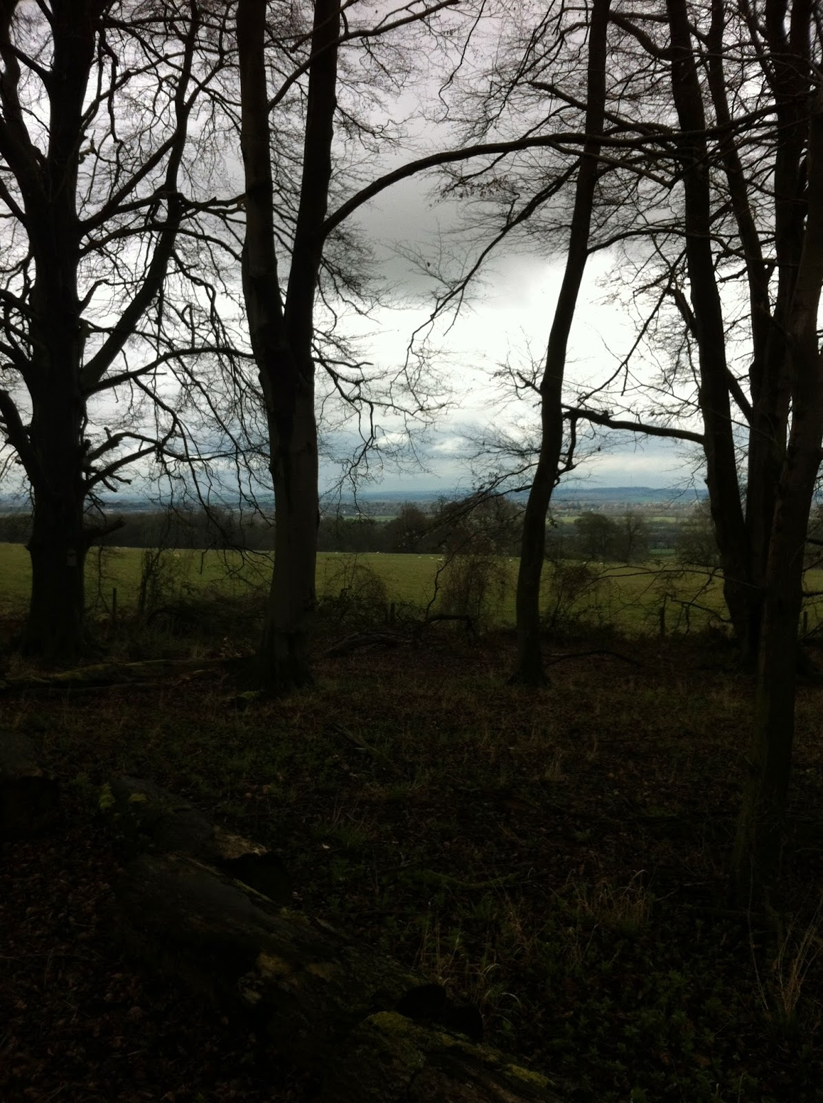 View from Wytham Woods on rainy day April 3rd 2015