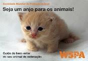 WSPA BRASIL