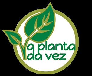 A planta da vez