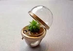 """Cincin anti global warming """"The Greenhouse Ring"""""""