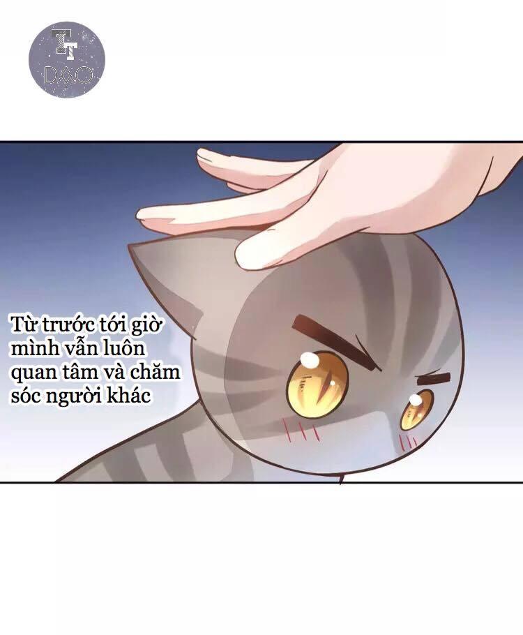 Dưới Móng Vuốt Mèo Chap 19 - Next Chap 20