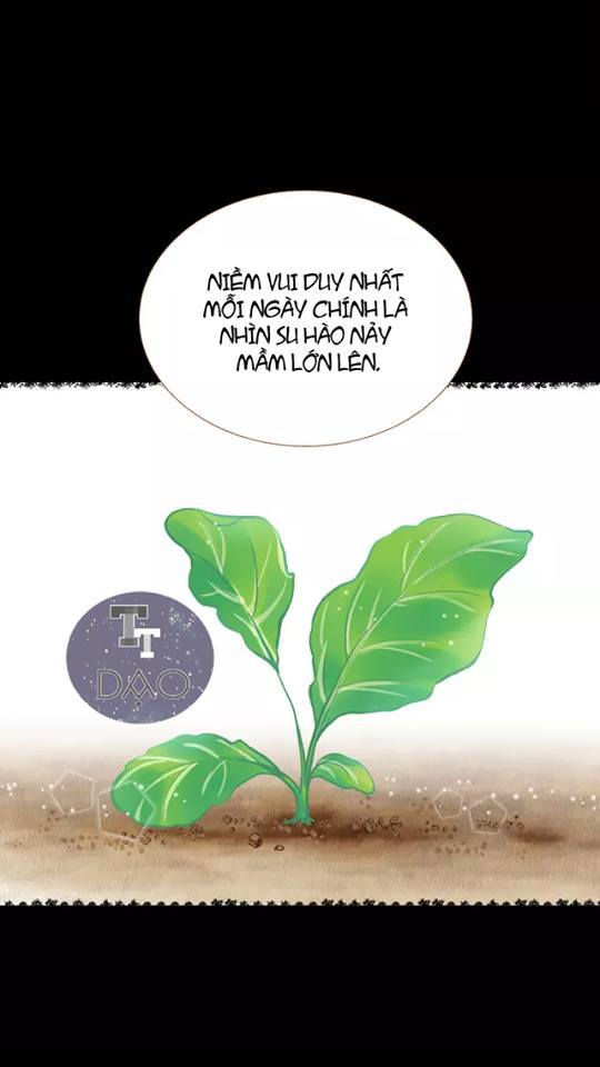Tân Lang Nuôi Từ Thuở Bé Chap 13