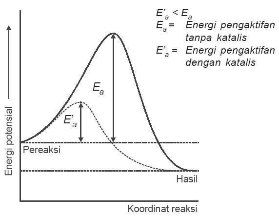 Teori tumbukan pada laju reaksi energi aktivasi kecepatan contoh katalis menurunkan energi pengaktifan ccuart Image collections