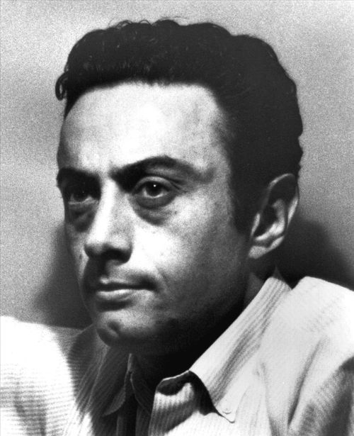 How much money makes Lenny Bruce? Net worth | 2017 Update