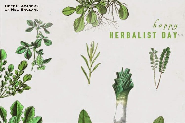 http://herbalacademyofne.com/2015/04/thank-an-herbalist-day/